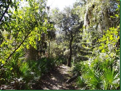 Florida Trail & Pie with Tawanda 013