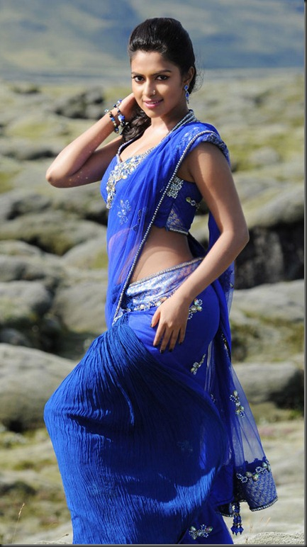 amala paul hot in naayak movie