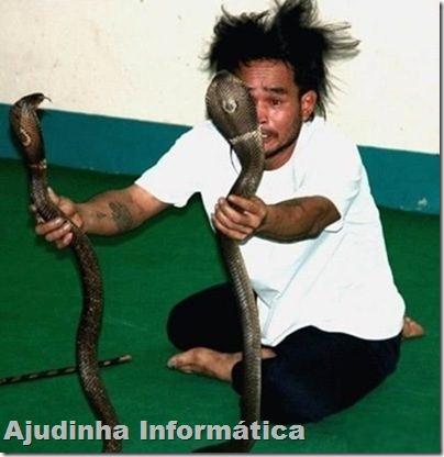 duas cobras