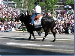 9001 Alberta Calgary Stampede Parade 100th Anniversary