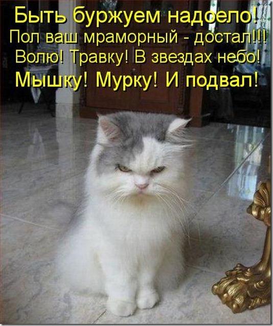 kotomatrix_00058