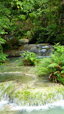 The Waterfalls Continue For Nearly a Kilometer Into the Forest - Port Vila, Vanuatu