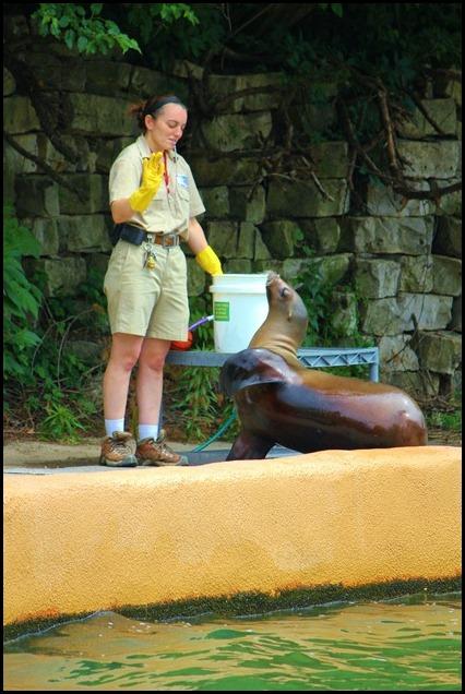 Zoo4 405