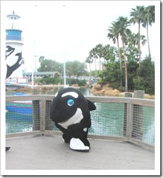 Florida vacation Sea World Shamu charecter