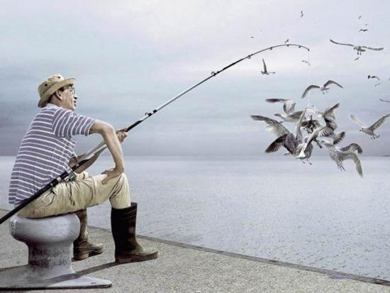Vì sao không nên câu cá giải trí?