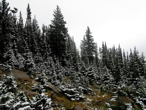 Early season snow and it's still summer in CO! It snowed down to the trailhead.