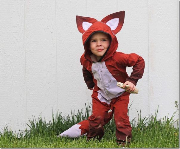 disfraz de zorro (3)