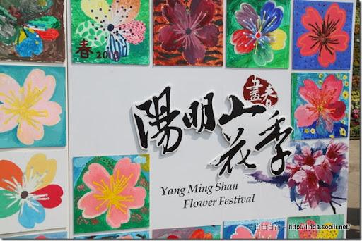 2010陽明山花季-圖示