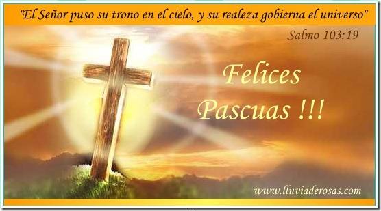 pascua (10)