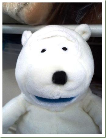 Bird's Eye polar Bear 3
