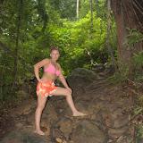 Деревья в джунглях могут расти прямо на камнях.