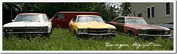 vintage car trio monte carlo chevy super sport impala 1966