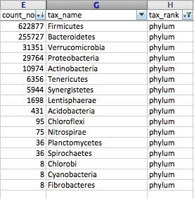 Screenshot Excel Phylum