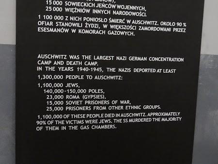 08. Numar morti la Auschwitz.JPG