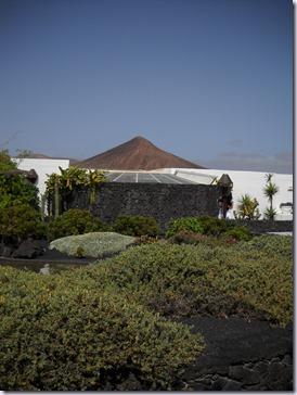 Lanzarote mare 562