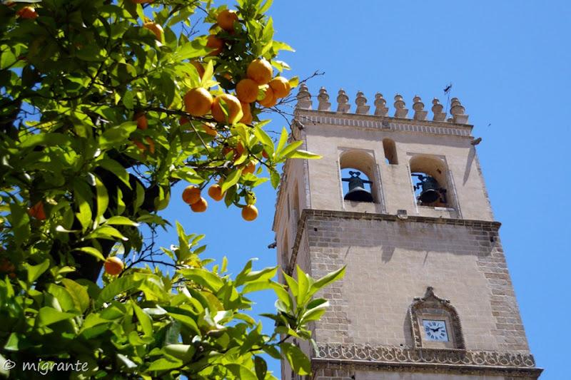 la torre y el naranjo - badajoz