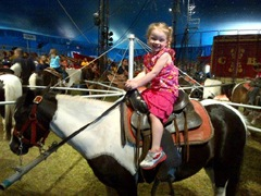 Bellz at the circus June 20.2013