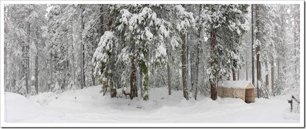 121223_snow_pano