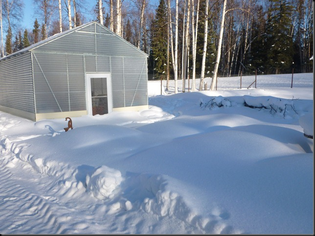 greenhouse under snow