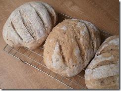 Wessex cobber bread