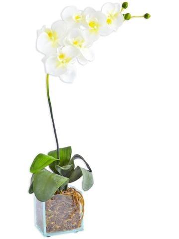 arranjo-de-flores-orquideas-vaso-1906