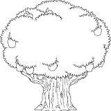 APPLE_TREE2_BW_thumb.jpg