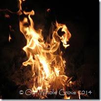 fire 16