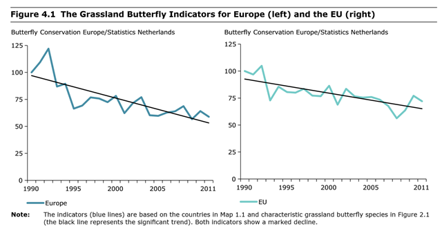 The European Grassland Butterfly Indicator, and the indicator for the Member States of the EU alone. The indicator is based on supranational species trends. Both indicators showed a marked decline between 1990 and 2011. Compared to 1990, the European populations of the 17 indicator species have declined by, on average, almost 50 percent. Graphic: EEA