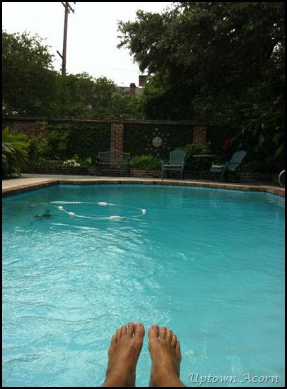 lipsey pool