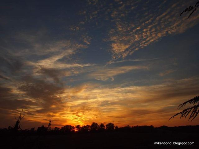 saffron sunset