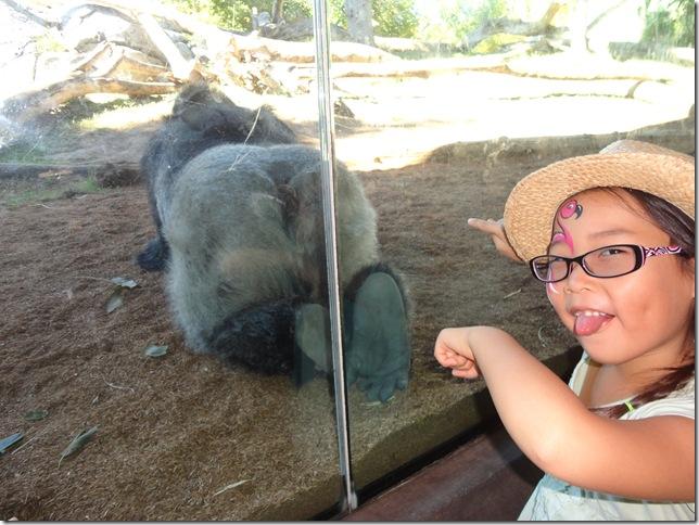 SD Zoo 077