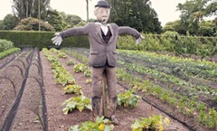 Lost-Gardens-Heligan-scarecrow