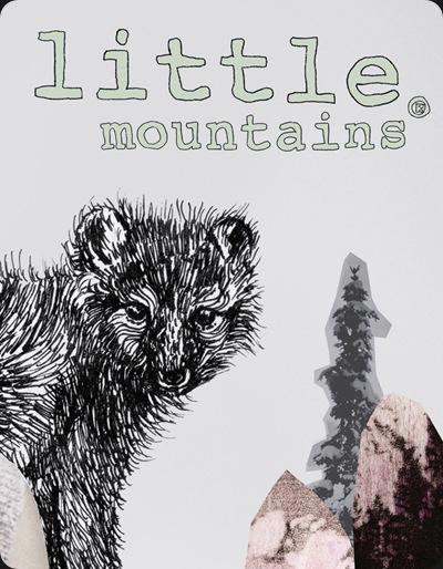 little_mountains_detail