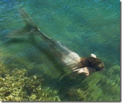 Бакстонская русалка