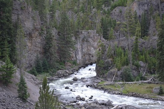 Rapids in Firehole Canyon