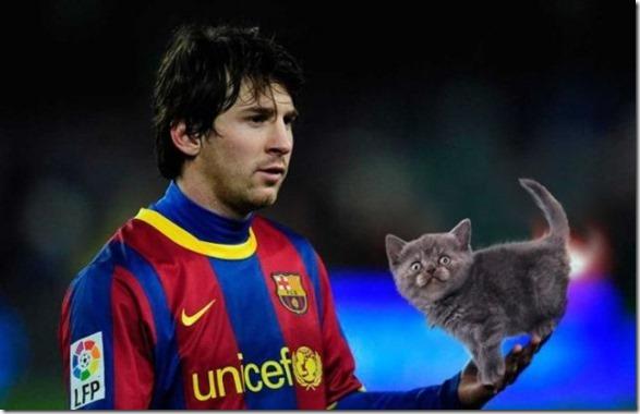 cats-sports-photoshop-5