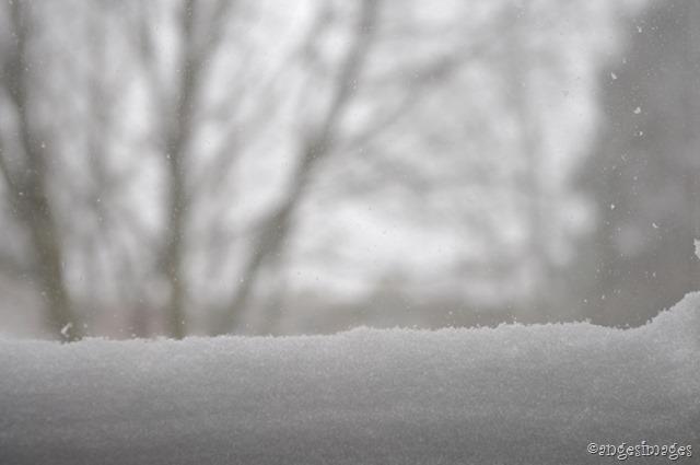 IMGP5930_snowflakeblog_02