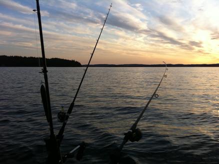 Kvällsfiske