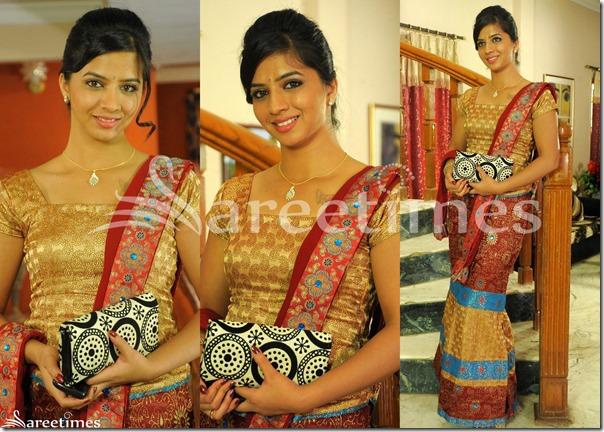 Nisha_Shah_Saree_Drape