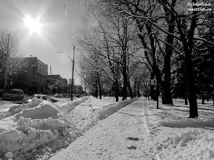 Iarna-Montreal_6548.jpg