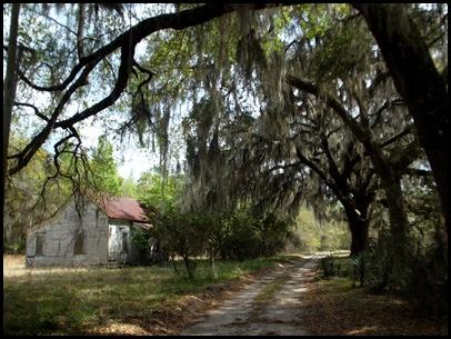 Gainesville to Hawthorn Bike Trail 185