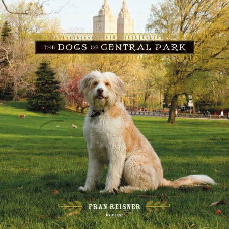 I love this book, The Dogs of Central Park,  for its unique look at New York's cherished pets.