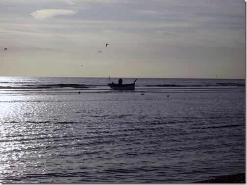 2012 jan beach 013