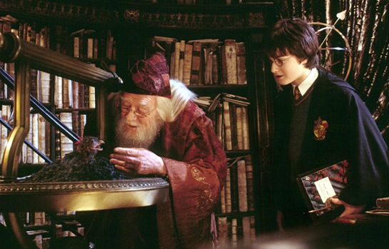 Harry Potter, Dumbledore and Fawkes
