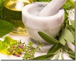 Tips Meramu Herbal