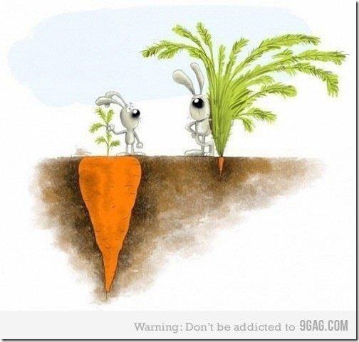 tirinha cenoura
