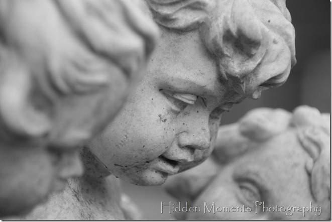 Day 13 - Cherubs Watching_BW