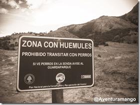 Zona com Huemules, El Chaltén