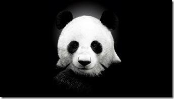 urs-panda-desktop