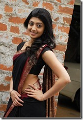 pranitha in_saree